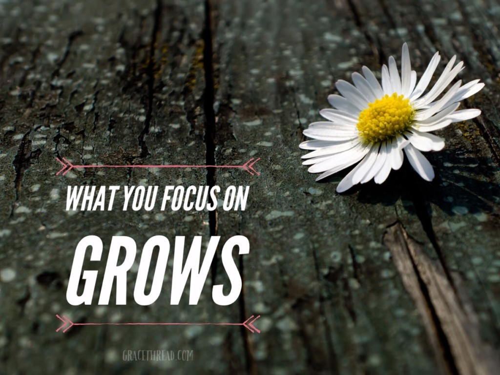 what you focus on grows - gracethread